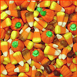 Autumn Mix 1 lb.